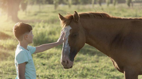 medium-shot-kid-petting-horse
